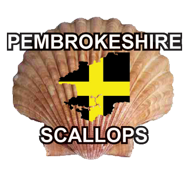 Pembrokeshire Scallops - One is Never Enough!